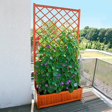 rankgitter-holz-180cm-rankhilfen